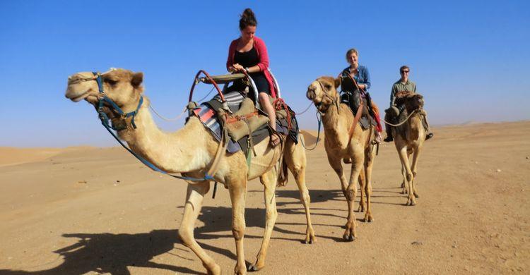 Safari de 3 h en quad dans le désert et chameau Hurghada