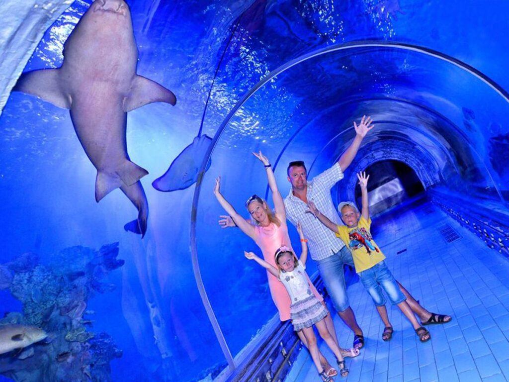 Hurghada Grand Aquarium Tickets