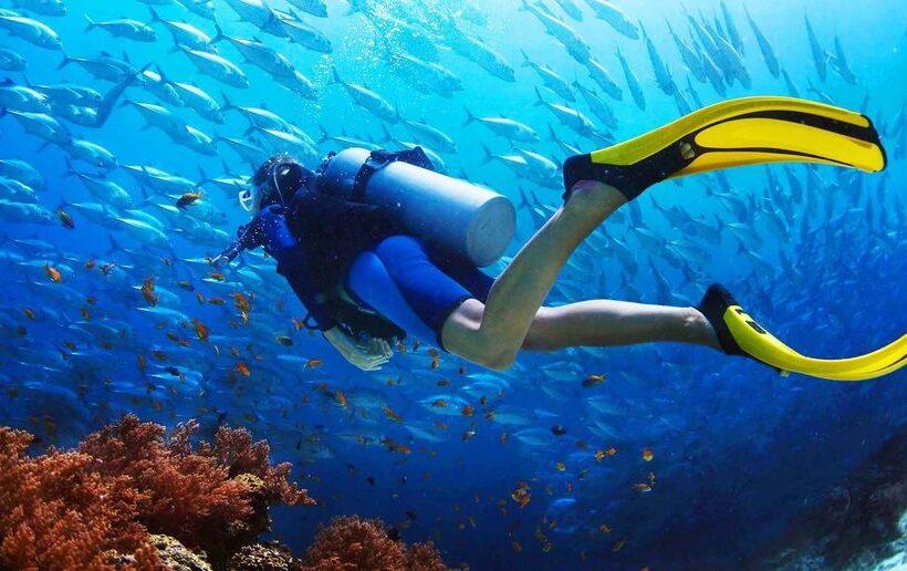 Sharm El Sheikh: Offshore Scuba Diving