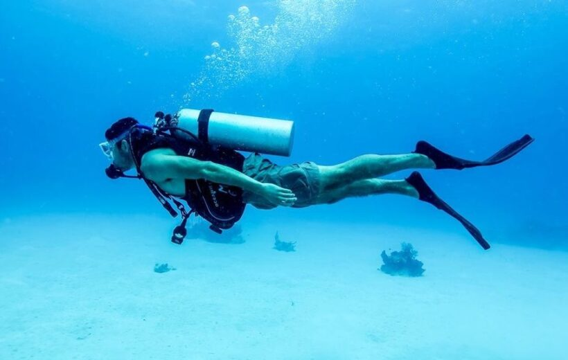 Makady Bay: Diving Course  PADI 3 Days with Transfers