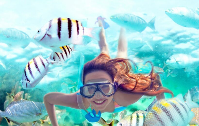 FROM HURGHADA: 4-HOUR SNORKELING TRIP AT 2 SITES WITH LUNCH