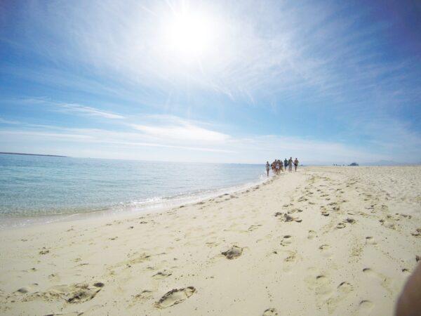 utopia island soma bay