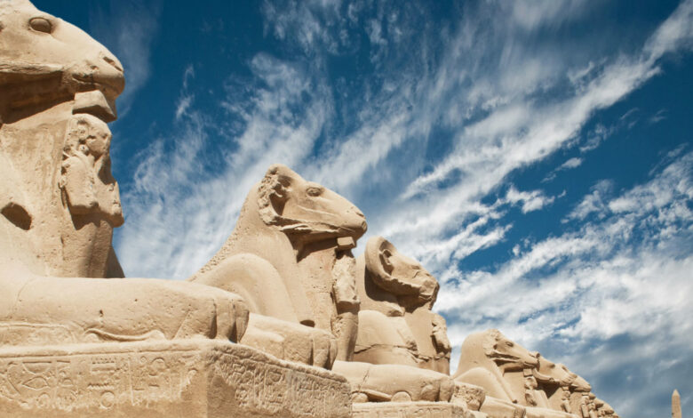 Makadi Bay: Day Trip to Luxor Highlights and Valley of The Kings Guided Tour