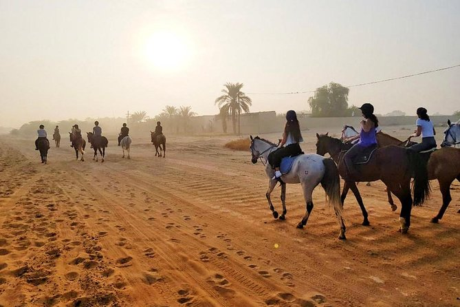 Hurghada: Horse Riding Private 2 Hours with Guide