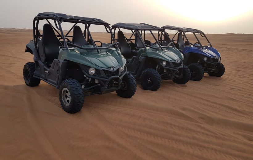 Soma Bay: Buggy Safari with Bedouin Village and BBQ Dinner