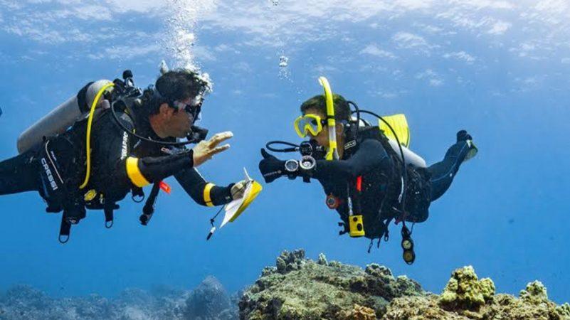 Diving Tour in Marsa Alam