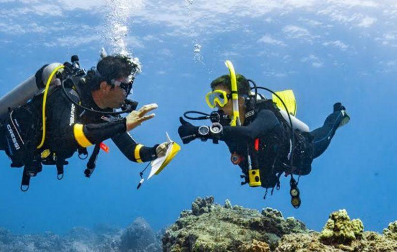 Marsa Alam: Discover Scuba Diving 6-Hour Tour