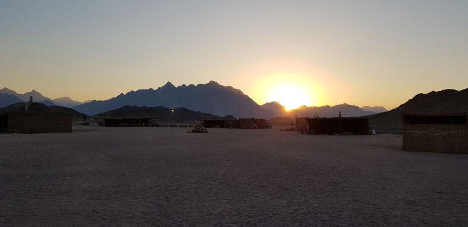 Sunset Safari Tour