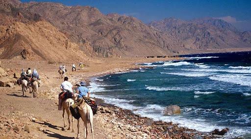 Take a Trip to Ras Abu Galum