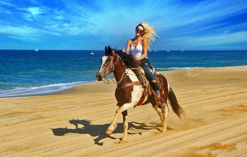Hurghada: Horse Ridding along the Sea with Swimming