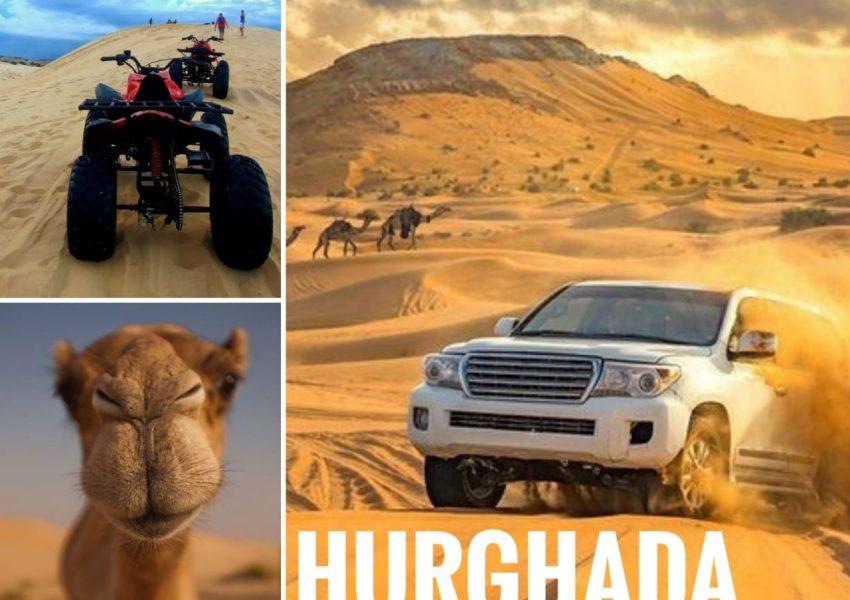 Safari Tours in Hurgahada