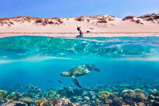 Soma Bay: 6 in 1 Tour | Giftun, Orange Bay Islands, Diving, Snorkeling, Water Sports, Fishing