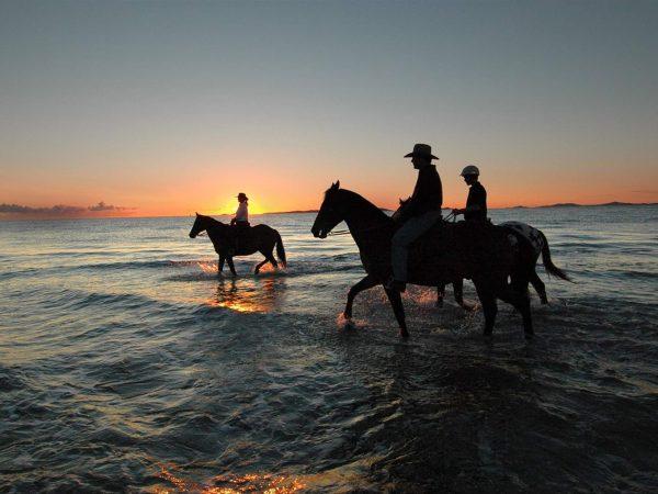Soma Bay: Horse Ridding