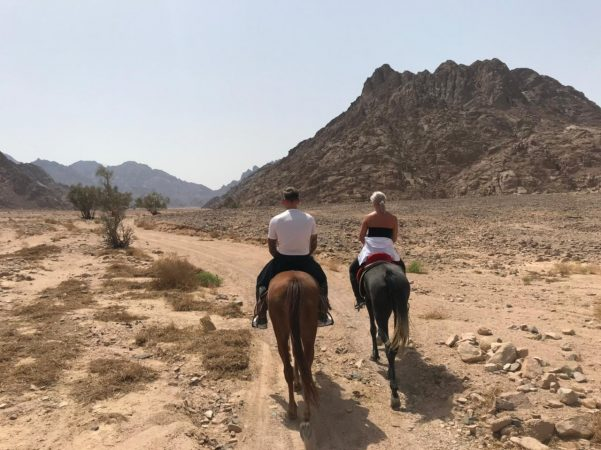 Horse ride in Makadi Bay
