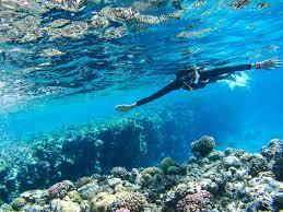 Hurghada: Utopia Island Snorkeling