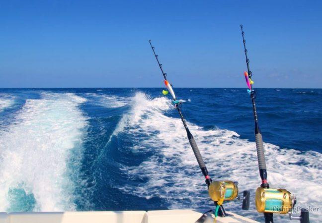 Fishing in El Gouna