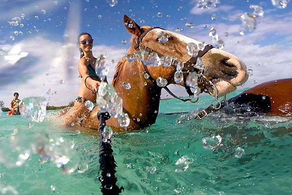 Swimming with Horse in Soma Bay