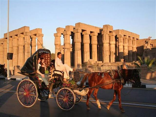 Horse Carriage Tour in Luxor