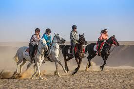 Horse ride in El Gouna