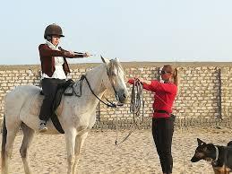 Horse ride in Hurghada