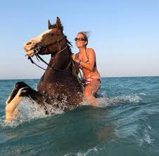 Swimming with Horse in Hurghada