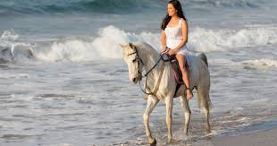 El Gouna: Horse Ridding along the Sea with Swimming