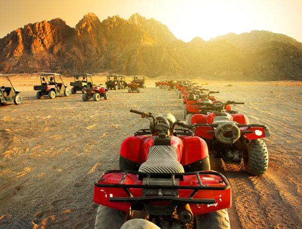 Super Safari Tour