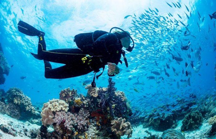 diving PADI Course