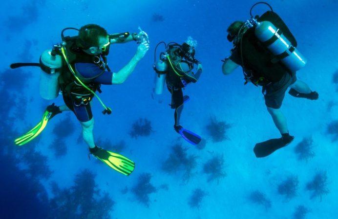 Makadi Bay: Diving course PADI