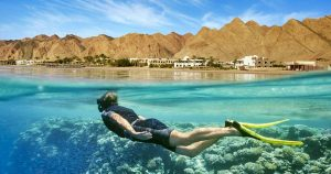 Cairo: Red Sea Day Tour with Lunch