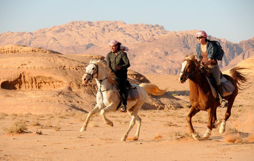 Sharm El Sheikh: 1-Hour Horseback riding Experience