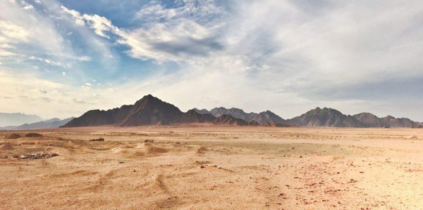 Desert Buggy Safari