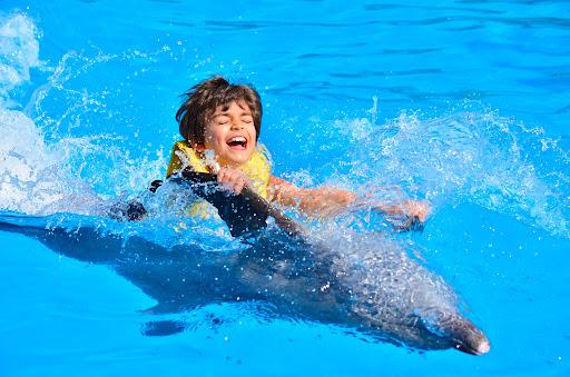 Sharm El Sheikh: Dolphin Swimming Tour